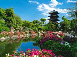 Images-from-Japan-