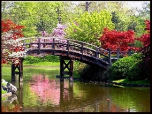jardin-en-japon320x240