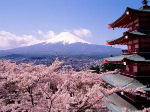 paisajes-japoneses-cerezos